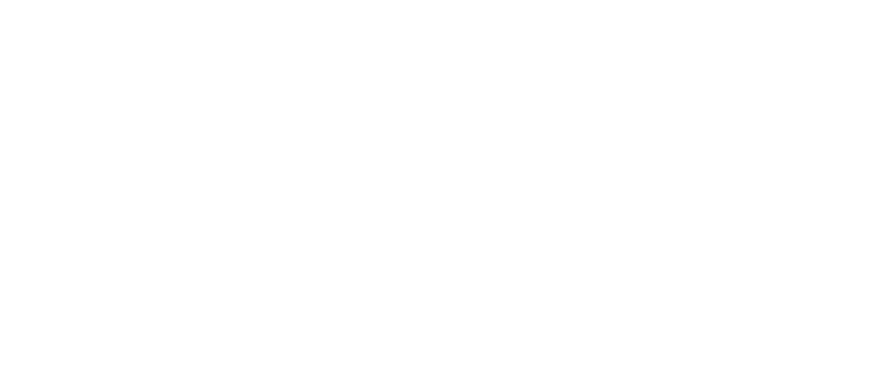 buse group logo